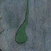 Miro - Sperm